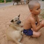 【カンボジア】眉毛犬とゲストハウスの息子