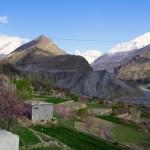 【パキスタン】フンザの春の匂い