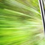 【マレーシア】 ジャングル・トレイン 車内から
