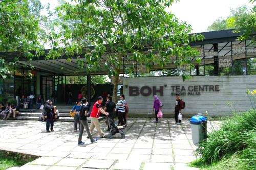 【キャメロンハイランド】ボーティー農園 BOH Tea Plantations
