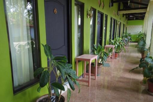 クパン Kupang 安宿 ゲストハウス EVER GREEN HOMESTAY