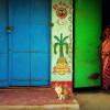 【インド・プリー 】漁村にいる猫